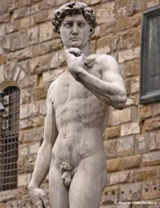 David-Piazza-della-Signoria-231x300